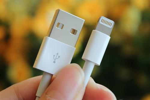 Apple lightning cable interface