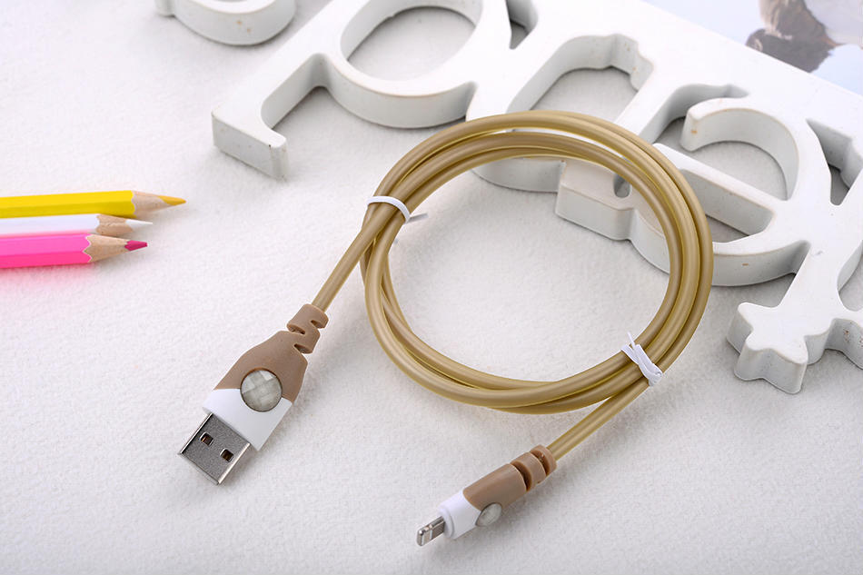USB-C type C cable vs lightning cable